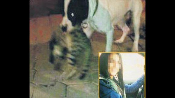 Köpeğine sokak hayvanlarını parçalattı