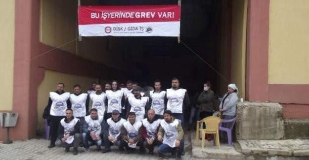 Munzur Su Fabrikası işçileri grevlerine devam ediyor