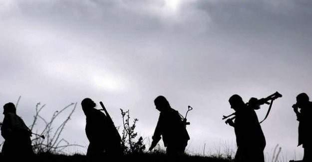 Şırnak'ta 8 kişi örgütten kaçıp teslim oldu