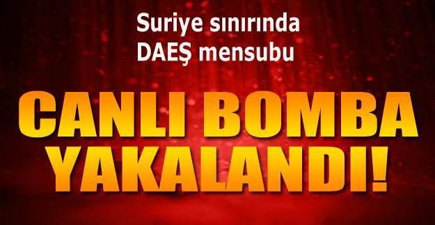 Canlı bomba yakalandı! Suriye sınırında canlı bomba ile 9  DAEŞ mensubu terörist yakalandı