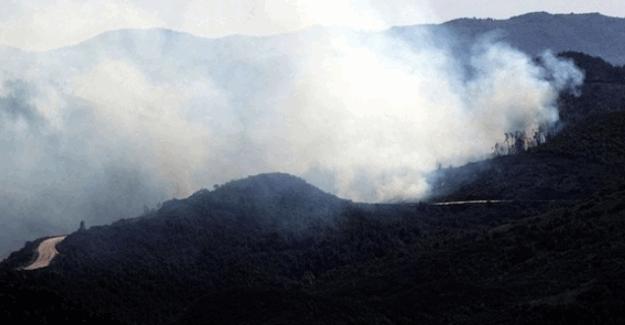 Türkiye sınırındaki Türkmen Dağı'nda yangın devam ediyor