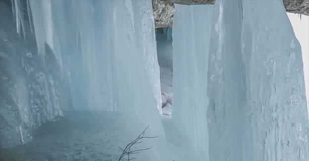 Buz Devri'nin sırları çözülüyor!