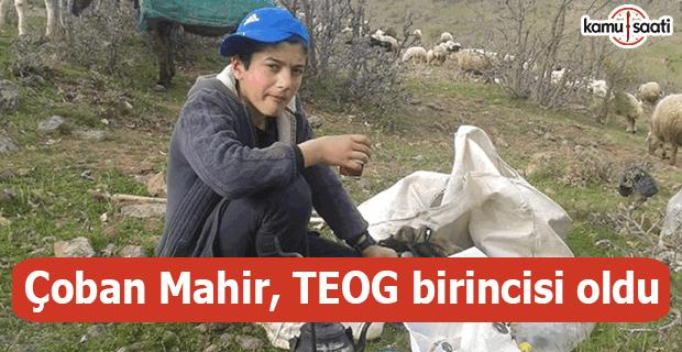 Çoban Mahir, TEOG birincisi oldu