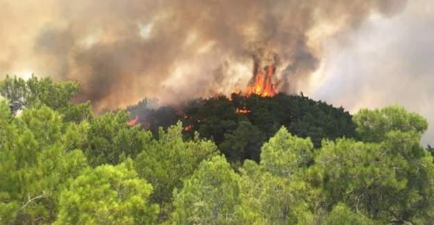 Manavgat'ta orman yangını; 1 yaralı