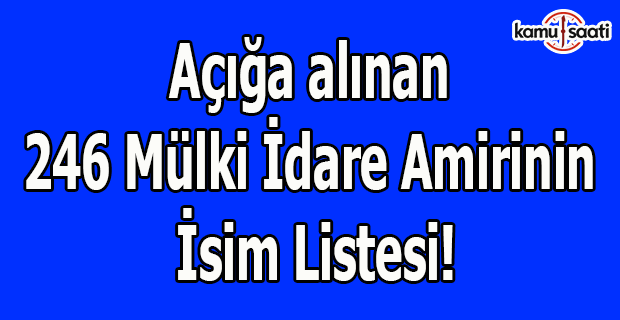 Açığa alınan 246 Mülki İdare Amirinin isim listesi!