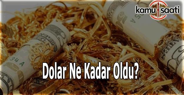 Dolar ne kadar oldu? Son dakika Döviz fiyatları