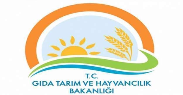 Gıda Tarım ve Hayvancılık Bakanı Faruk Çelik,Kurban Bayramı için açıklama yaptı