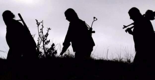 Gri listede bulunan 2 PKK'lı terörist öldürüldü