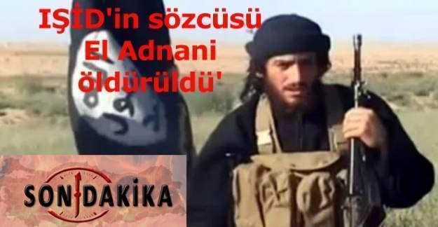 IŞİD'in sözcüsü el Adnani öldürüldü !