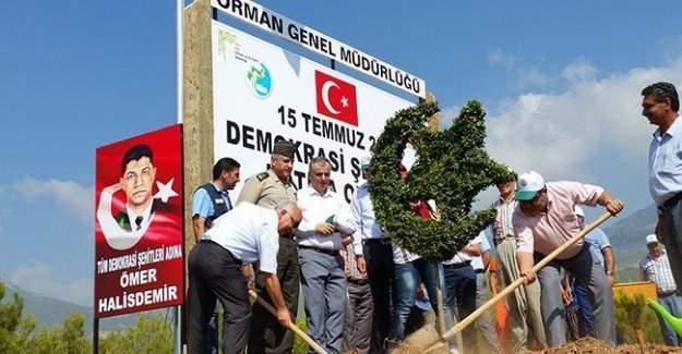 Mersin'de Şehit Ömer Halisdemir hatıra ormanı yapılıyor