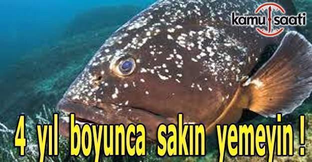 Bu balıkları 4 yıl yemek yasak