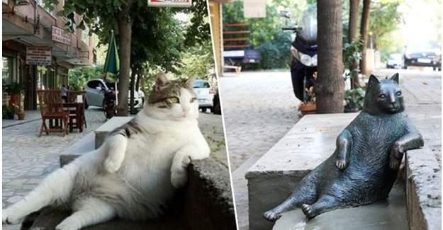 """Oturuşuyla ünlenen kedi """"Tombili""""nin heykeli yapıldı"""