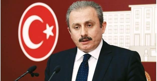 Şentop: Başkanlık teklifi 10 gün içinde Meclis'te