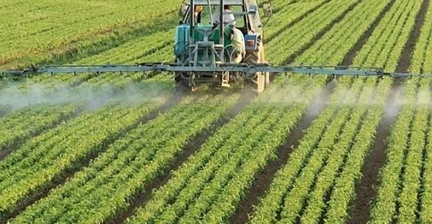 Bitkisel Üretime Destekleme Ödemesine Dair Tebliğ'de Değişiklik Yapıldı