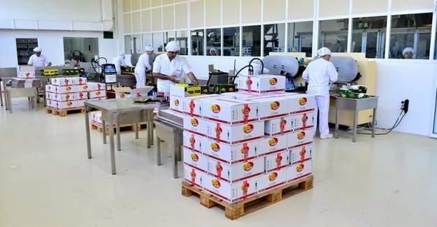 Japonlar Türk gıda şirketini satın aldı