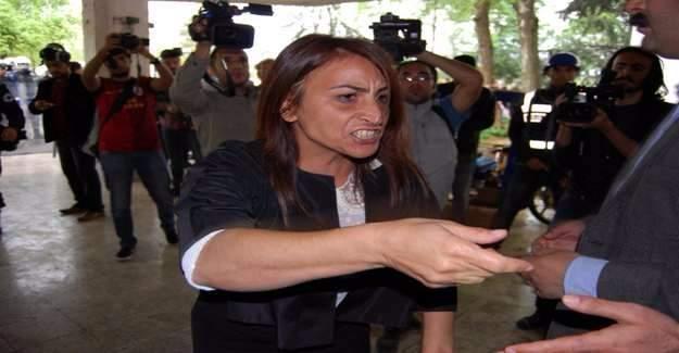 HDP'li Aysel Tuğluk gözaltına alındı - Aysel Tuğluk kimdir?