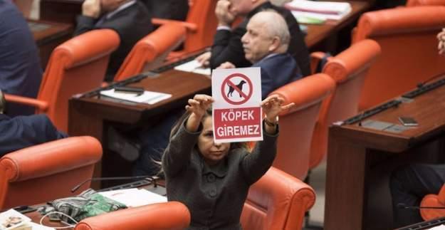 Meclis'te 'köpek giremez' afişi olay yarattı