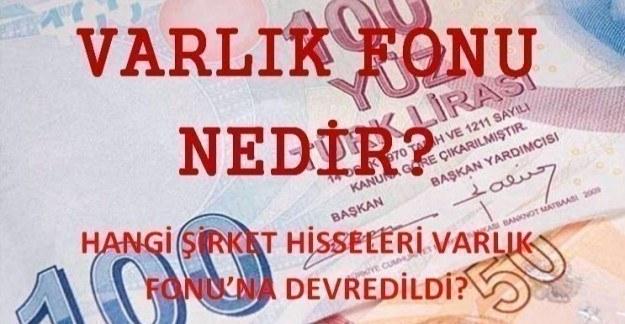 Türkiye Varlık Fonu nedir? Hangi şirket hisseleri Varlık Fonu'na devredildi?