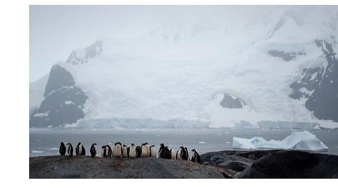 Bilim insanlarından 'Antarktika'yı koruyun' çağrısı