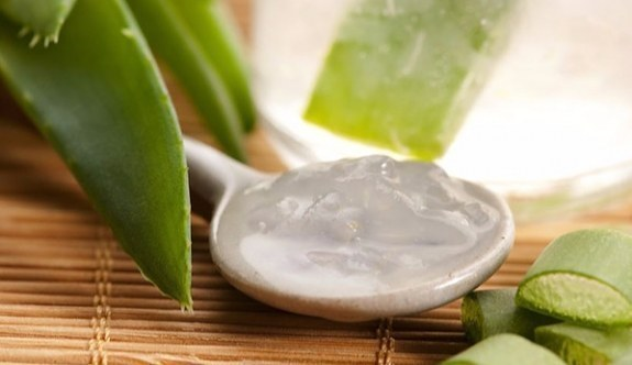 Aloe Vera nedir? Aloe Vera'nın faydaları nelerdir?