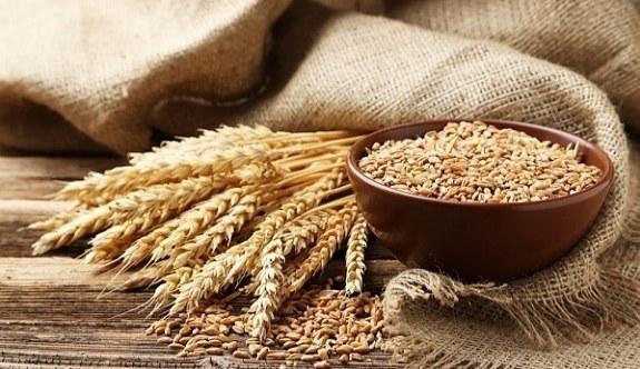 Rusya Türk gıda ürünlerine yönelik kararnameyi yayınladı