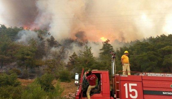 İzmir ve Mersin'in ardından Çanakkale'de de orman yangını