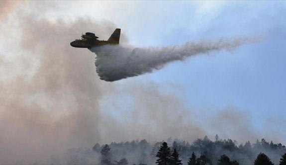 Bilecik'e sıçrayan orman yangını etkisini sürdürüyor