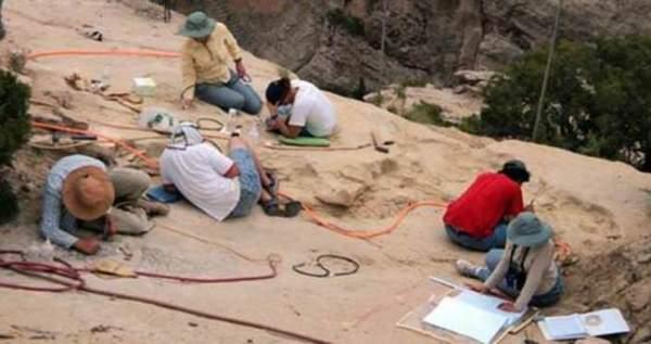 250 milyon yıllık dev kanatlı sürüngen fosili bulundu