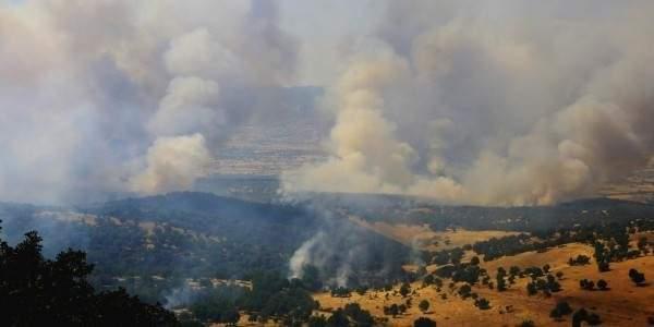 3 İlde PKK operasyonu