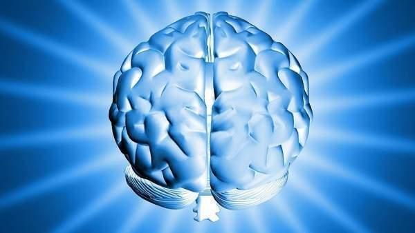 Beyinden Beyine İletişim Sağlandı