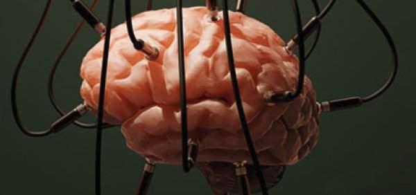 Bilim Adamları Beyni Kontrol Etmeyi Başardı