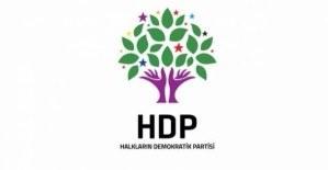 HDP'li İl Başkanı Güleryüz ve yöneticileri gözaltında