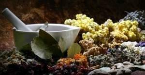 Aktarlara bitkisel ürün yasağı - Artık 71 bitkisel ürünün satışı yasak