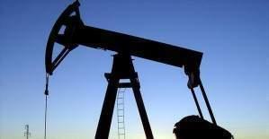 Brent petrol 46 doları aştı!