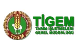 TİGEM Genel Müdür Yardımcılığına Vekaleten Mehmet Güleç atandı