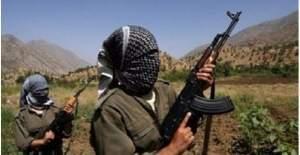 Çölemerik'te (Hakkari) bir terörist teslim oldu
