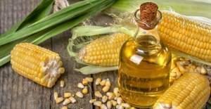 Tarım Bakanı Çelik: 2016 mısır alım fiyatı 740 lira