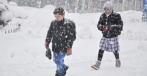 Ağrı'da kar tatili