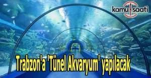 Trabzon'a 'Tünel Akvaryum' yapılacak