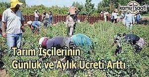 Tarım işçilerinin günlük ve aylık ücreti arttı