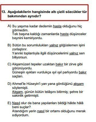 YGS 13. soru