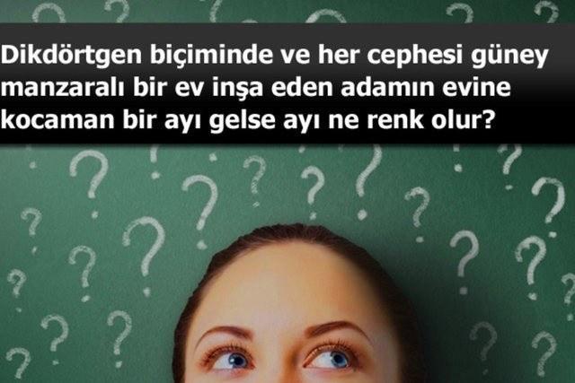 Beyin çalıştıran zeka soruları-2