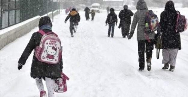 Ardahan ve Rize'de  kar tatili