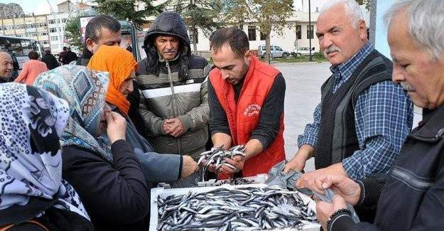 Hayırsever balıkçı 2 buçuk ton hamsi dağıttı