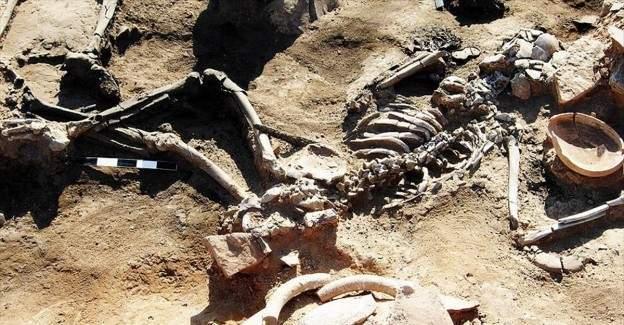 Bu kalıntılar insanlık tarihinin en eski katliamına mı ait?