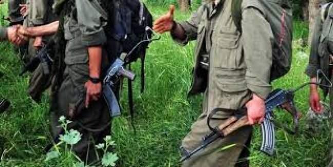 PKK'nın planı suya düştü