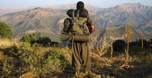 Terörist, HDP'li milletvekilden yardım istedi
