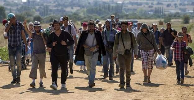 Sığınmacılara niteliklerine göre iş verilecek!