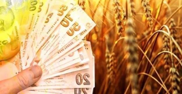 Çiftçilere destek ödemesi yarın başlayacak
