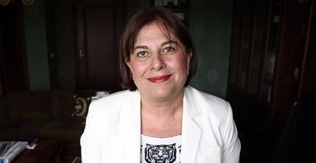 CHP'li vekil Elif Doğan'dan istifa açıklaması